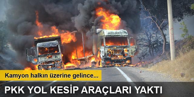Tunceli'de PKK'lı bir grup yol kesip araç yaktı