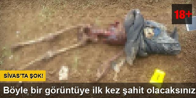 Sivas'ta korkunç görüntü